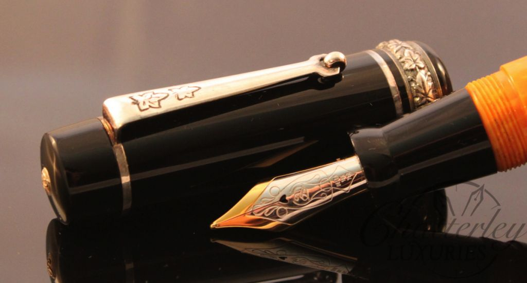 Delta Colosseum Limited Edition Fountain Pen (1)