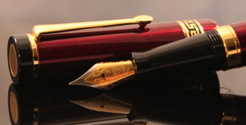Danitrio Fountain Pen with Steel Nib